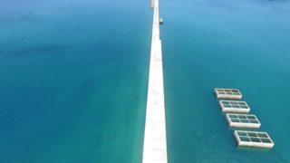 平良港(防波堤外地区)岸壁(-10.0m)消波ブロック撤去工事(第2次)